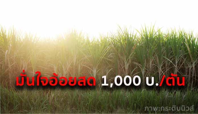 ก.อุตฯ มั่นใจราคาอ้อยสดทะลุ 1,000 บาท/ตันอ้อย เตรียมเสนอวงเงินช่วยอีก 10,000 ล้านบาท
